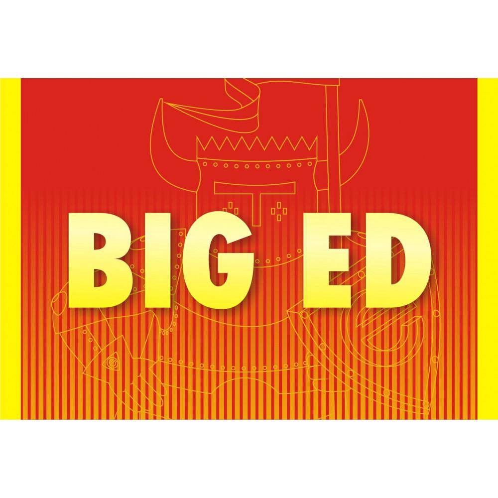 F14B BIG ED 1/48 Eduard 4971
